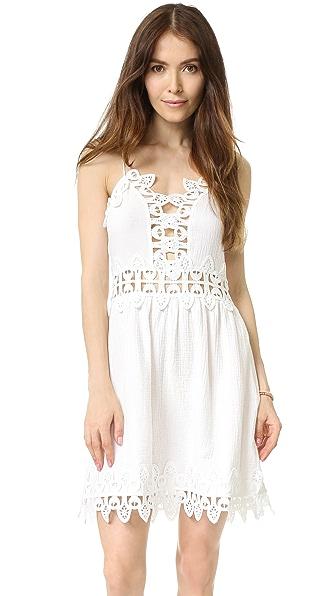 Saylor Tayler Mini Dress