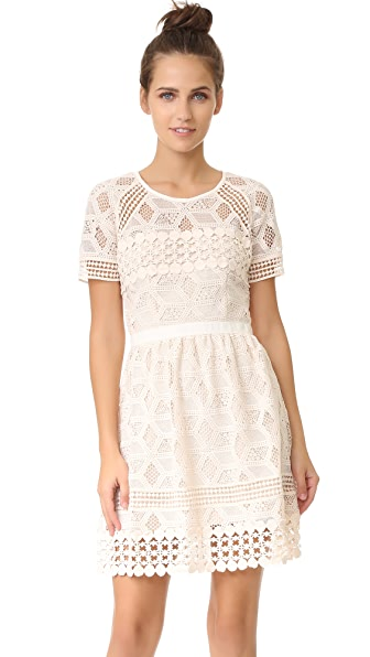 Saylor Valencia Mini Dress - Shell