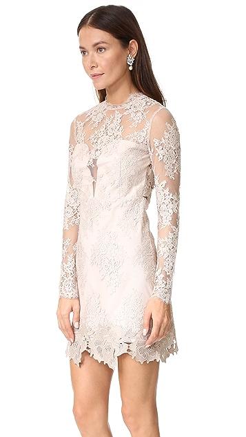Saylor Leondra Lace Dress