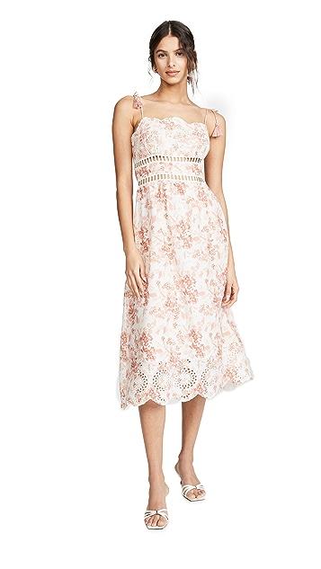 Photo of  Saylor Ireland Dress - shop Saylor dresses online sales