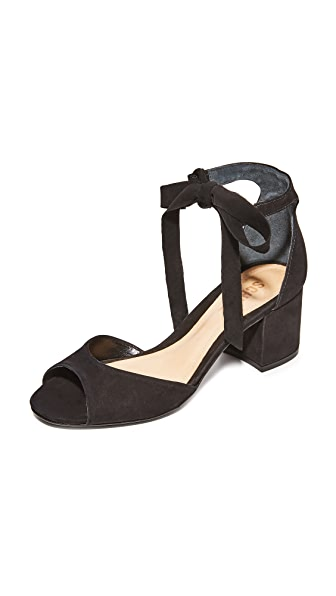 Schutz Nere City Sandals - Black