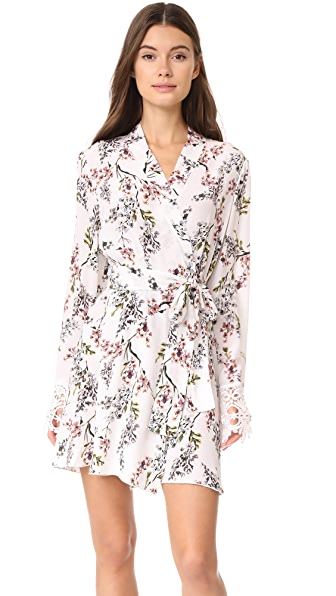 Stone Cold Fox Stone Robe at Shopbop