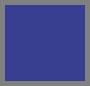 Royal Blue/Neon Coral