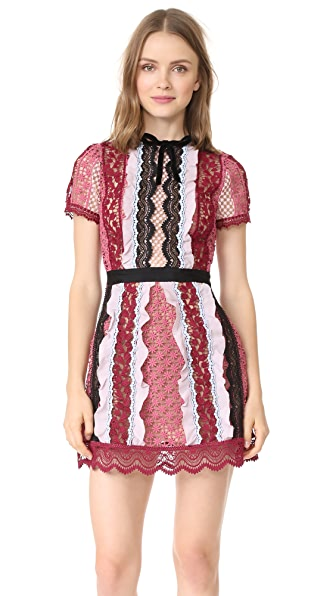 Self Portrait Panelled Bellis Lace Trim Mini Dress In Pink