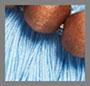 коричневый/голубой