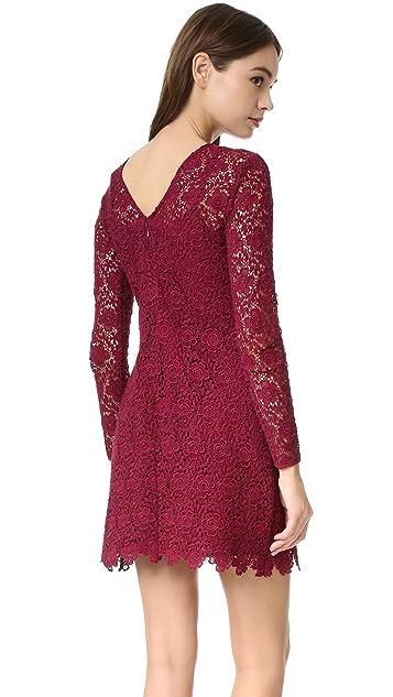 Shoshanna Mena Lace Dress