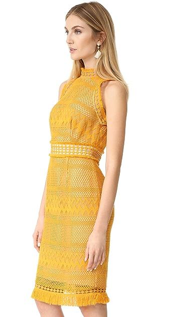 Shoshanna Cabrillo Dress