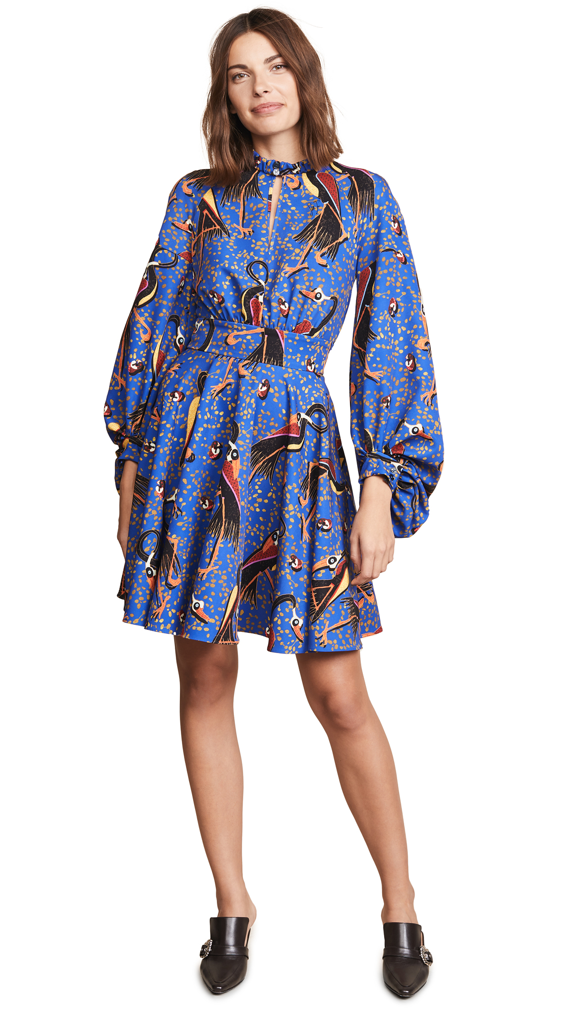 Crane Balloon Sleeve Dress, Blue Multi