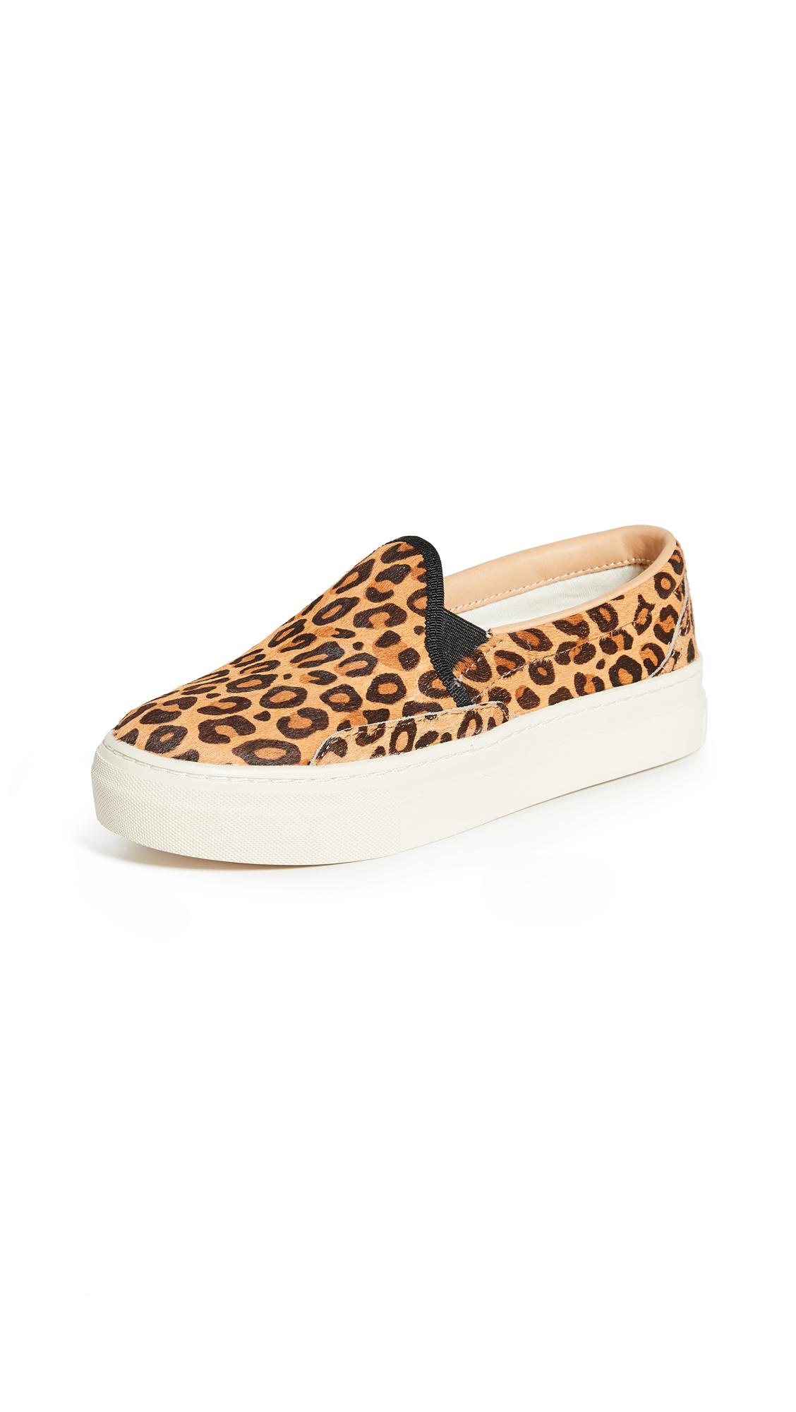 Buy Soludos online - photo of Soludos Bondi Printed Sneakers