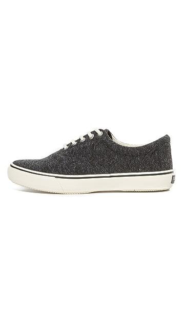 Sperry Striper LL Jersey CVO Sneakers