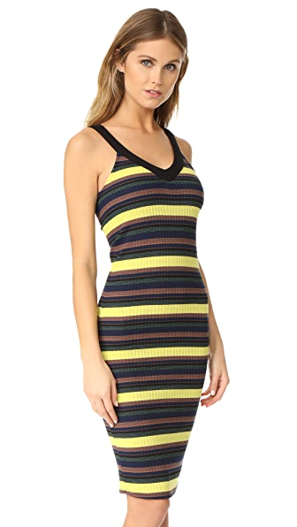 Splendid Jungle Stripe Dress