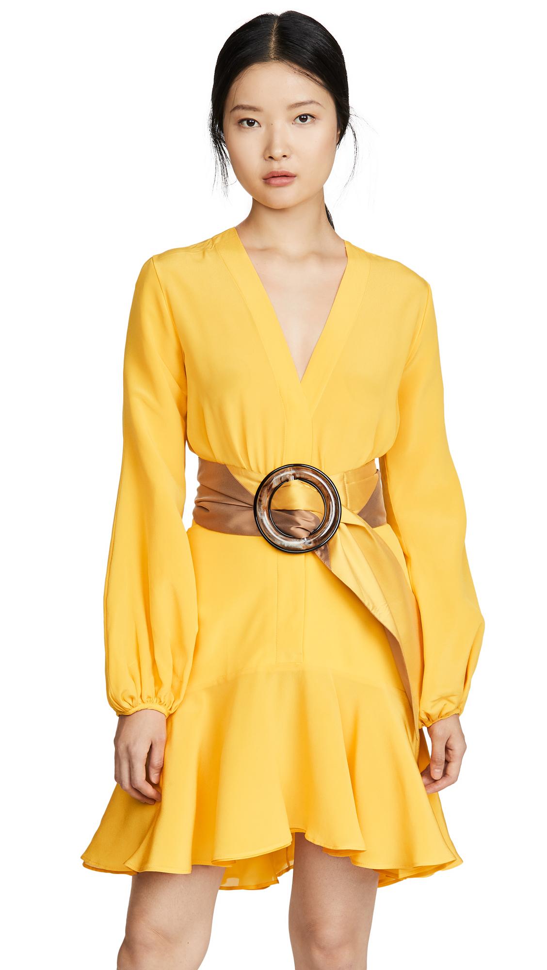 Buy Silvia Tcherassi online - photo of Silvia Tcherassi Filis Dress And Belt