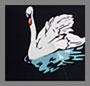 Black/White Swan Print