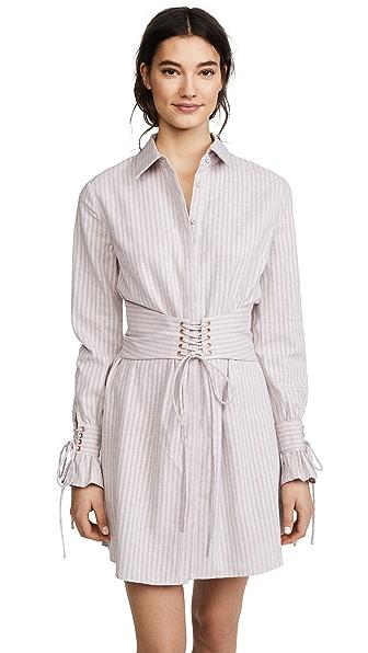 STYLESTALKER Mackenzie Shirtdress In Peony