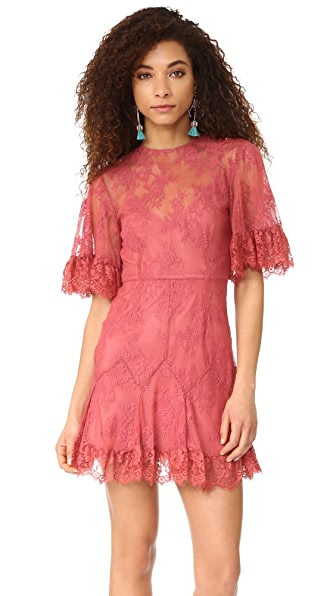 Talulah Blind Love Mini Dress - Rose Wood