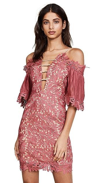 Talulah Fresco Off Shoulder Lace Mini Dress