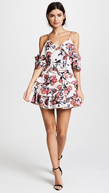 Talulah Rose Quartz Ruffle Mini Dress
