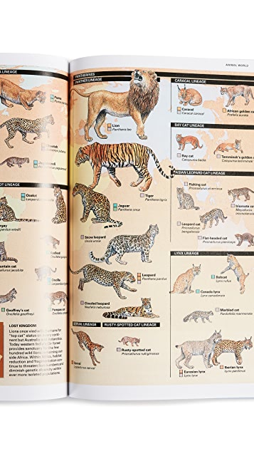 Taschen National Geographic Infographics