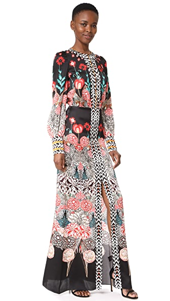 Temperley London Blaze Printed Sleeved Dress