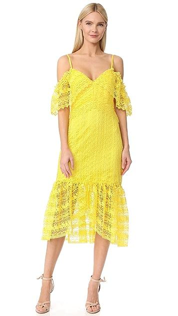 Three Floor Starry Eyed Lace Dress