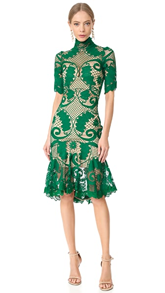 THURLEY Babylon Lace Dress In Emerald/Nude