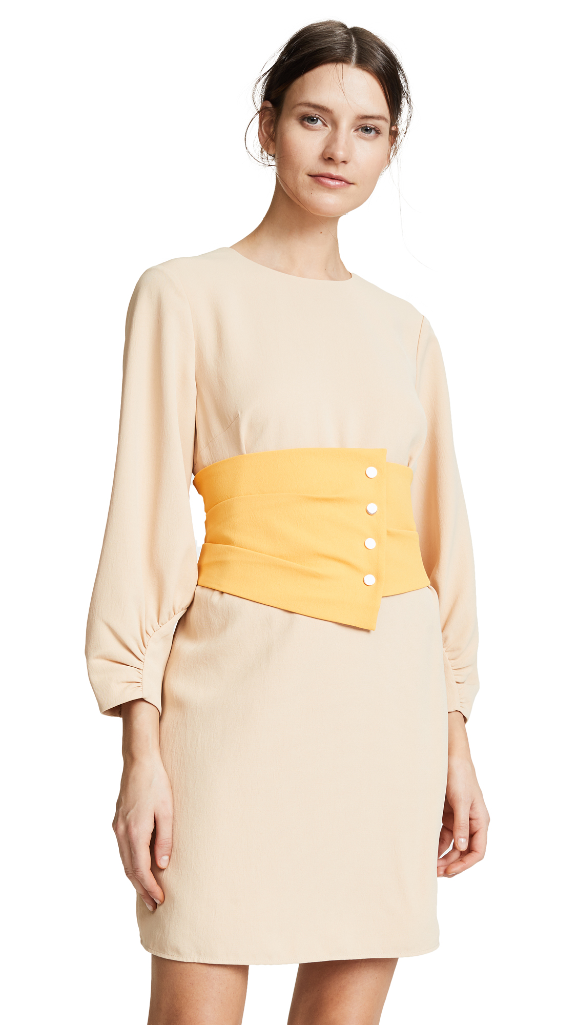 Tibi Shirred Corset Dress