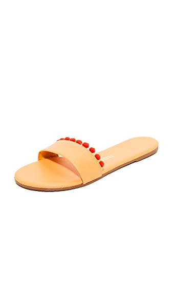TKEES Alex Pom Slides - Lolita