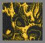 Leopard Yellow
