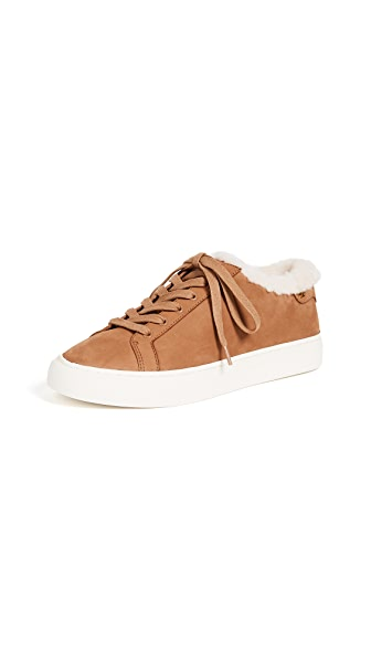 Tory Burch Lawrence Low Top Sneakers In Royal Tan