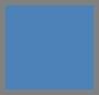 Blue Wild Pansy