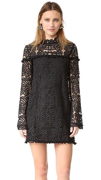 TULAROSA Matilda Lace Dress - Onyx