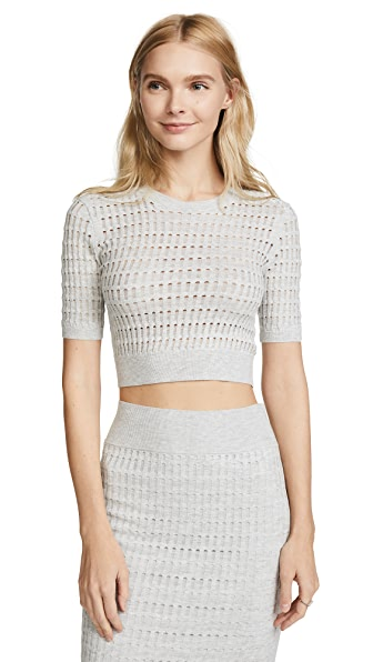 T by Alexander Wang Lace Short Sleeve Crop Top In Light Heather Grey