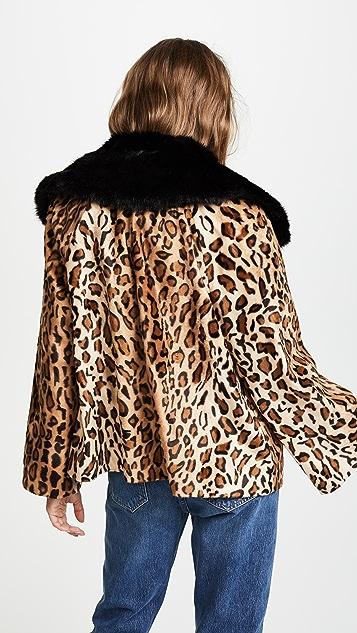 Velvet Windy Jacket