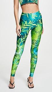 Versace 棕榈印花贴腿裤
