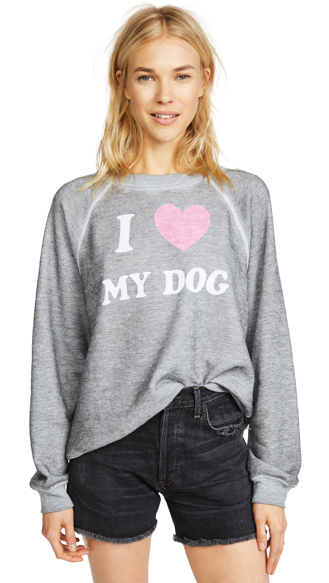 Wildfox Must Love Dogs Sweatshirt In Heather Burnout