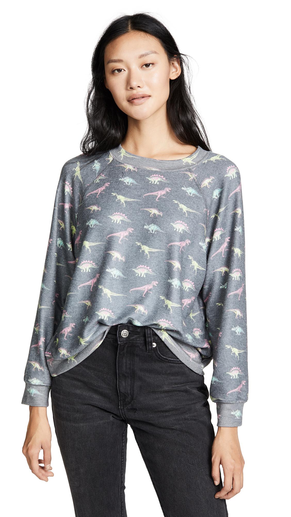 Wildfox Retro Dino Sweatshirt In Multi
