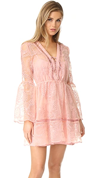 We Are Kindred Sweet Pea Dress