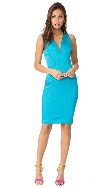 Zac Posen Sirena Dress
