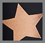 Rose Gold Big Star Foil/Nylon