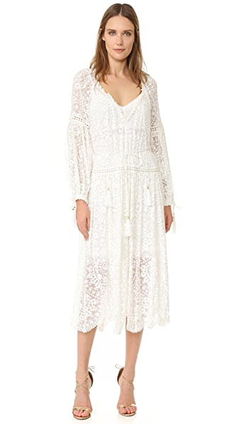 Zimmermann Gossamer Scallop Dress