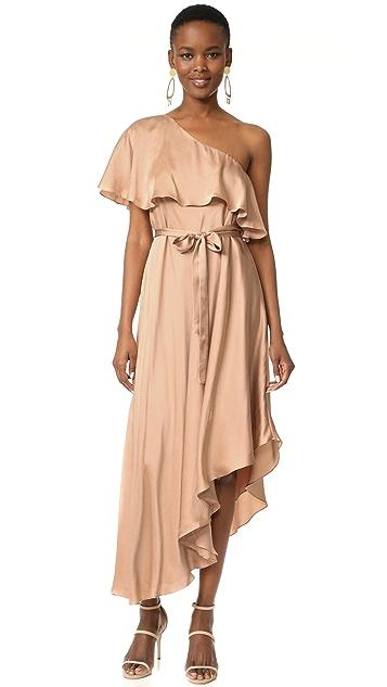 Zimmermann Sueded One Shoulder Long Dress