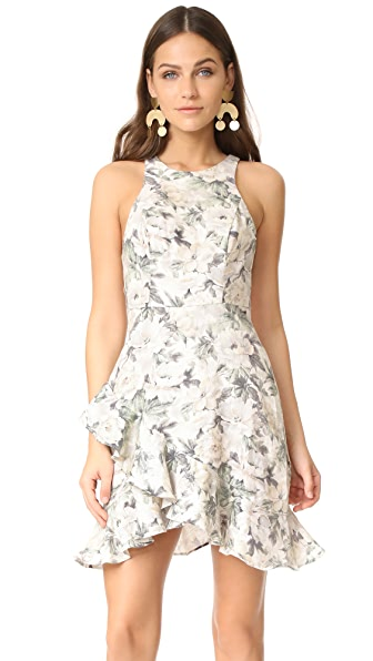 Zimmermann Bowerbird Mini Dress