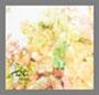 Cirtus Stamp Floral
