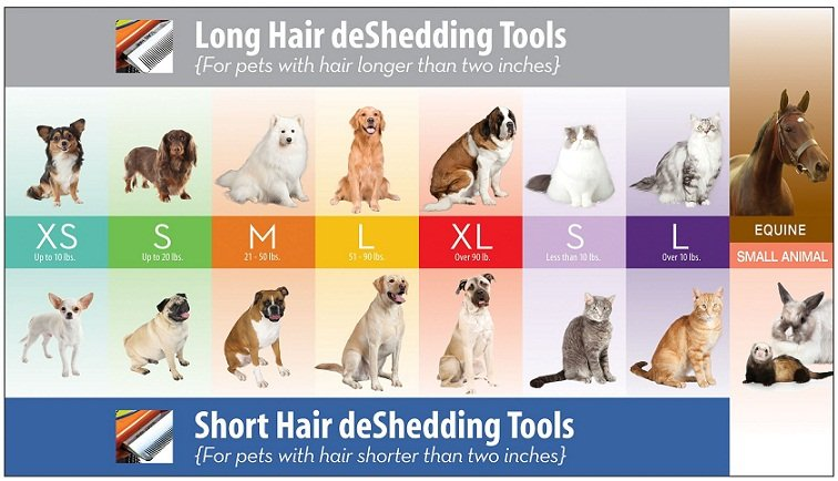 Amazon.com : FURminator Short Hair deShedding Tool for