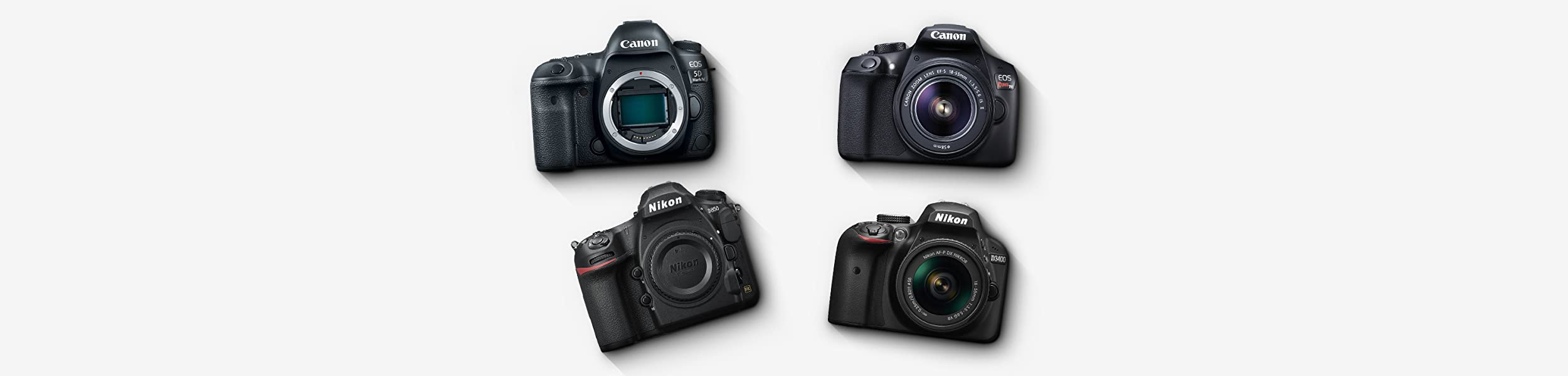 top rated digital S L R cameras