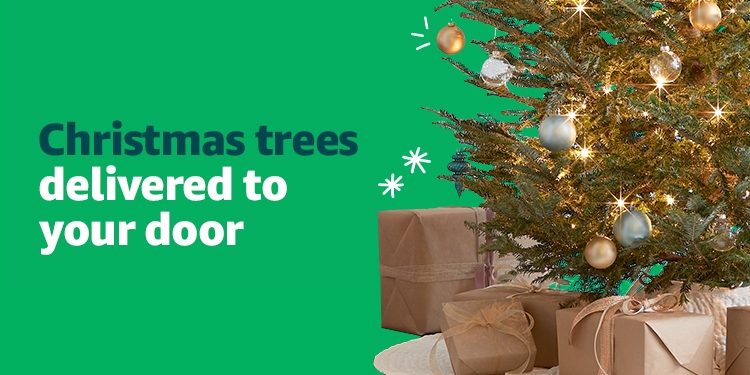 Black Friday Christmas trees delivered to your door