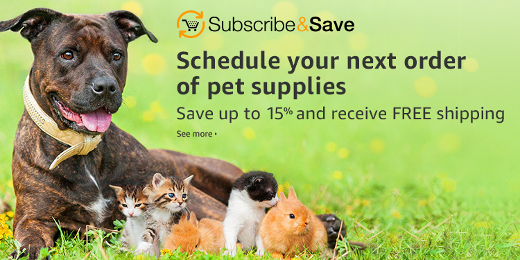 Schedule your next order of dog supplies