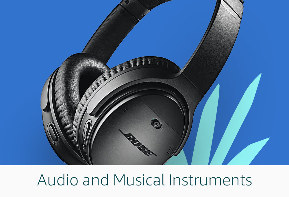 Audio and Musical Instruments