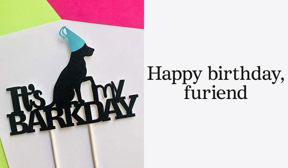 Happy birthday, furiend