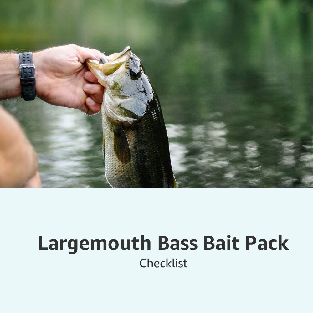 Largemouth Bass Bait Pack